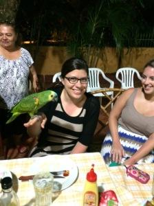 Meet the Parrots